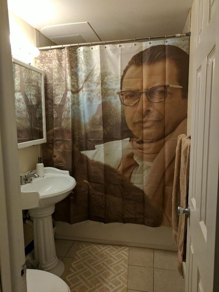 Wish   Jeff Goldblum Custom Waterproof Shower Curtain 60x72 Inch ...