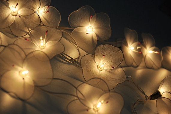 Picture of Soft White Flower String Lights For Patioweddingparty And Decoration 20 Bulbs
