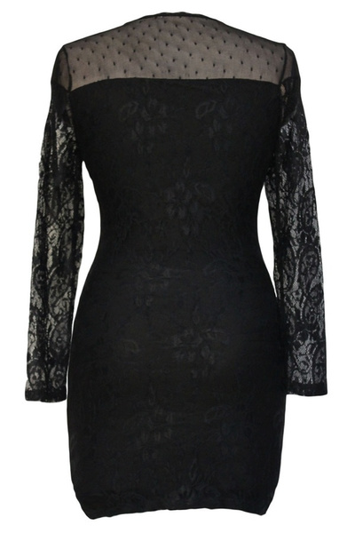 Wish   Damen elegant Flumen Dot Netted Laenge Aermel Mini Kleid