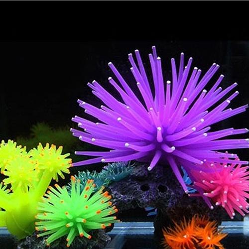 aquariumaccessorie, aquariumdecor, Plantes, Mode