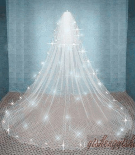 Wish | 2T Ivory Cathedral Wedding Bridal Cathedral VEIL SHAWL Comb ...