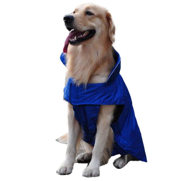 Собаки универсальные