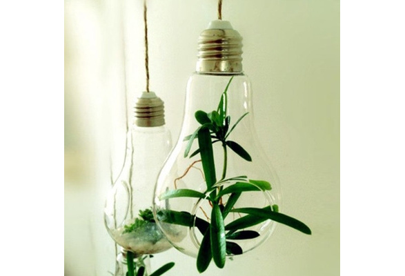 Light Bulb Shape Glass Hanging Hydroponic Flower Plant Container Wedding Wall