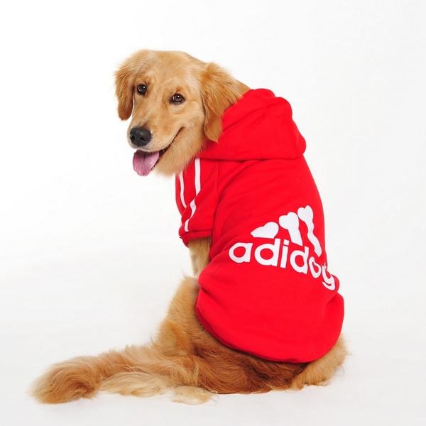 bigdog, Fashion, Winter, big