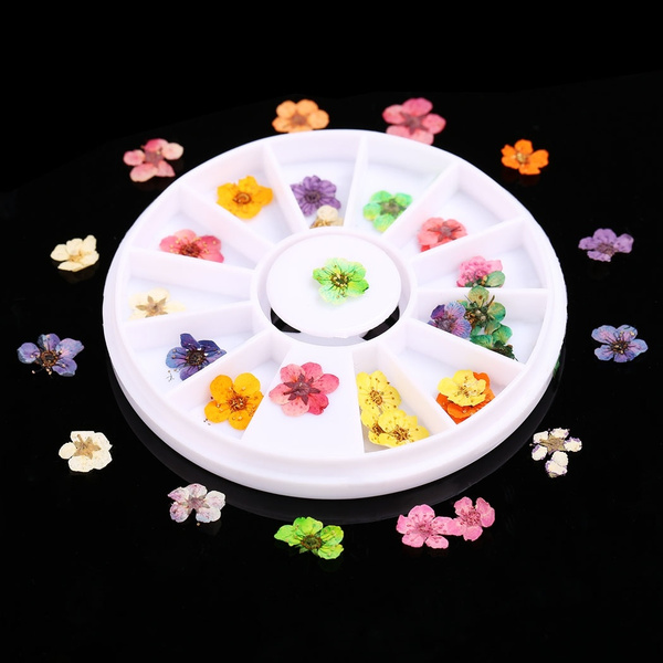 36pcs DIY 3D Nail Art Tips Sticker True Dried Flower Nail Art UV Acrylic Decoration 12 Styles