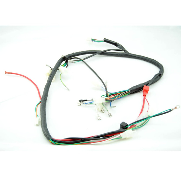 wish quad wiring harness 200 250cc chinese electric start loncin 20 18
