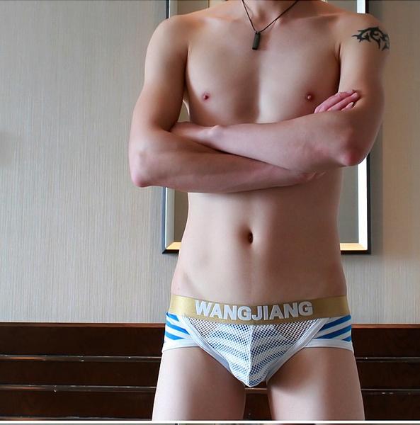 2681a9149bd2 9 Color Men s Striped Underwear Men Fashion Briefs with Cotton Mesh ...