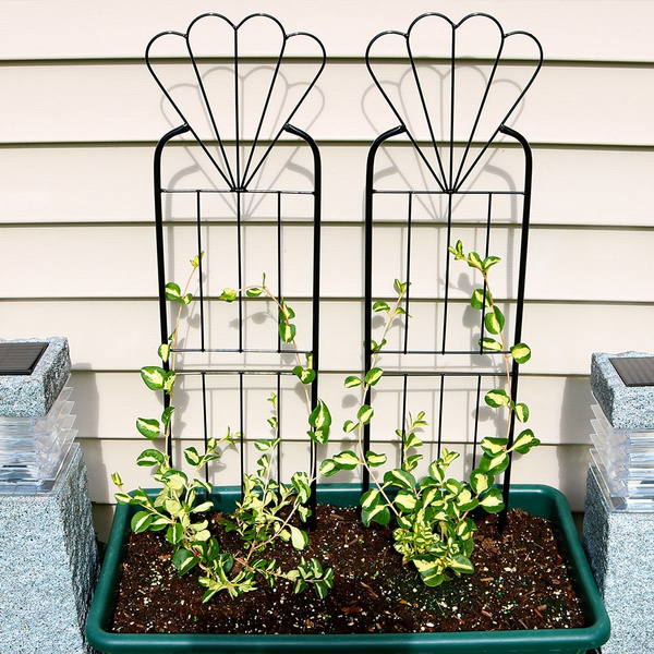 Sunnydaze 32 Inch Flower Design Garden Trellis, Metal Wire For Outdoor  Climbing Plants And Vines, Black, Set Of 2 | Wish