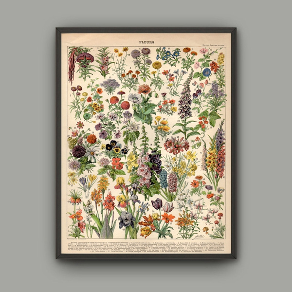 Wish Not Framed Flower Print On Cavas Wall Art Pictures For Home