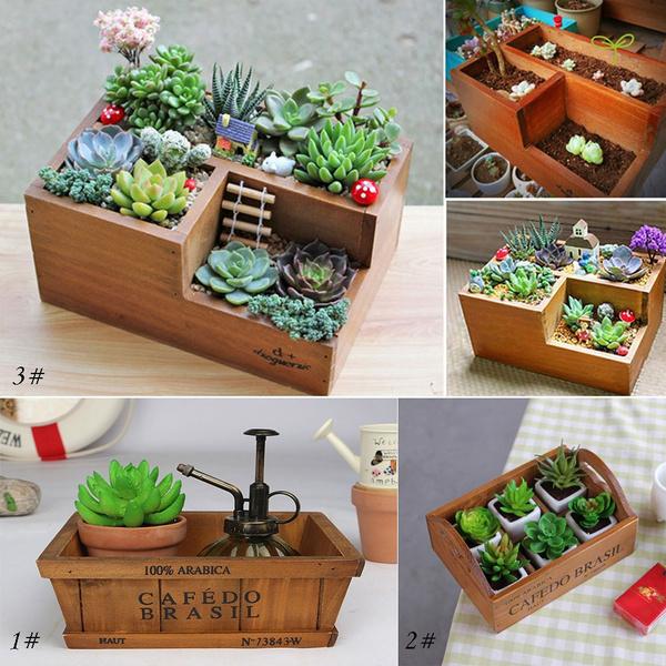 Box, Plants, Flowers, Yard