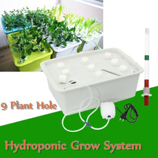 hydroponicsflower, vegetablebox, hydroponicgrowkitsystem, hydroponiccontainer