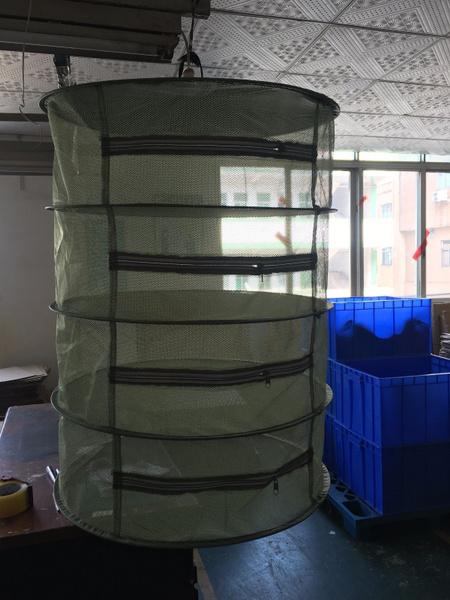 Herb, Green, dryingnet