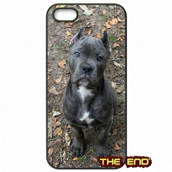 cover iphone 6s cani