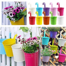 Bonsai, gardentoolsampampampampequipment, hangingflowerpot, Flowers