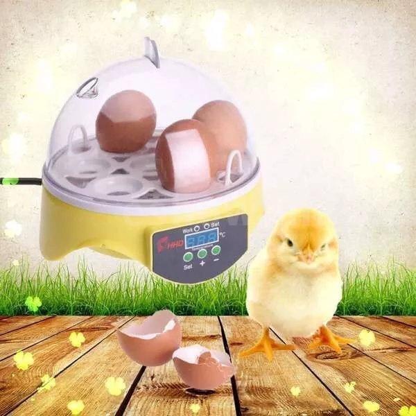 7 Eggs Mini Digital Egg Incubator Hatcher Transparent Eggs Hatching Machine  Automatic Temperature Control for Chicken Duck Bird Eggs AC220V