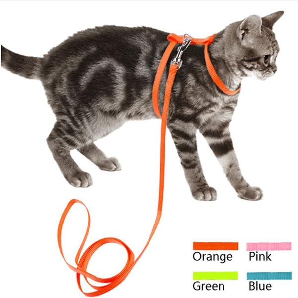 Fashion Accessory, Fashion, Nylon, Pets