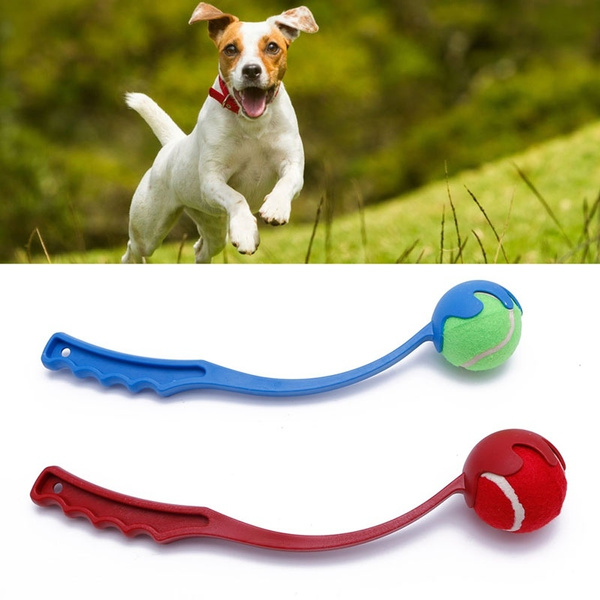 Toy, Tennis, Pets, Pet Products