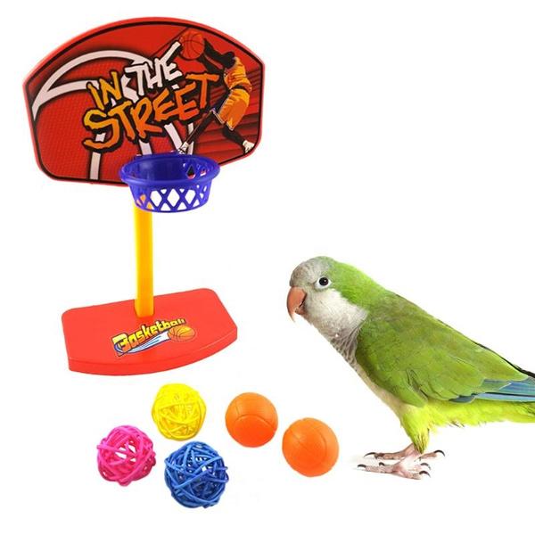 birdtrainingprop, Basketball, parakeetbellball, Sports & Outdoors