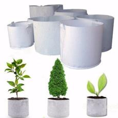 Plants, Fashion, Yard, Garden