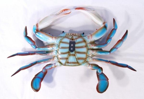 Wish | Large Replica Chesapeake Bay Blue Crab Wall Decor