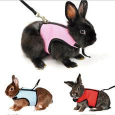 lead, animalaccessorie, Pets, Harness