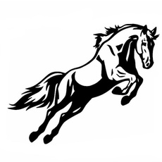 Funny, horse, cardecor, Cars