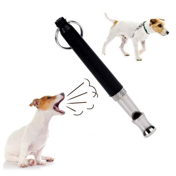 Training, barking, Pets, Dogs
