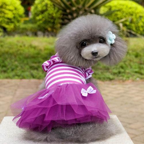 Pet Small Puppy Dog Tutu Dress Lace Skirt Cat Princess Dress Clothes Apparel NEW