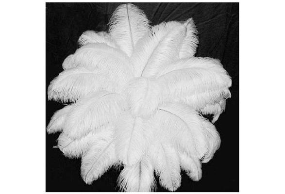 comdigi 10pcs Natural Ostrich Feathers Wedding Party Decoration high quality