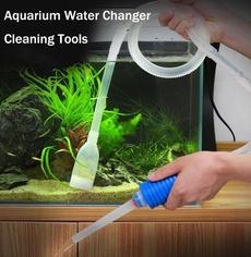 suctionpipe, fishaquarium, Tank, fish