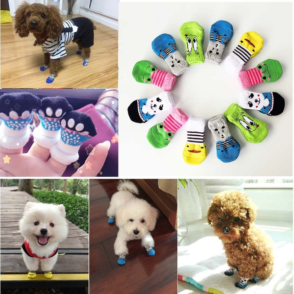 dogsock, Cotton Socks, petaccessorie, cute