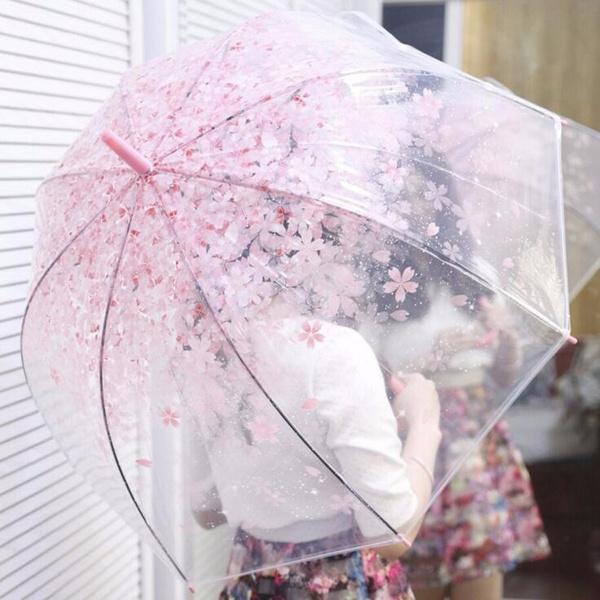 rainumbrella, Fashion, Umbrella, sunumbrella