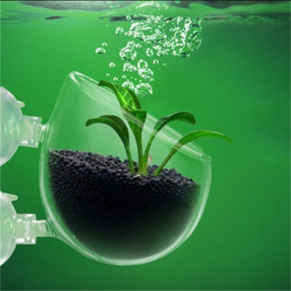 Mini, plantslandscapecup, cultivationcup, suckercup