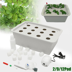 hydroponicsflower, Box, seedsgrowbox, growbox