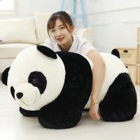 Anxiety Stuffed Animal, Panda Teddy Wish