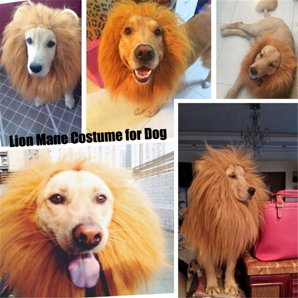 b2db430a1 Lion Mane Costume for Dog, Dog Lion Wig for Dog Large Pet Festival Party  Fancy Hair Dog Clothes   Wish