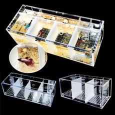 Box, 3gridsfishtank, fishaquarium, Tank