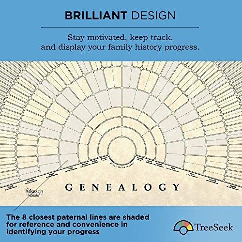 wish treeseek genealogy fan wall chart large blank fillable