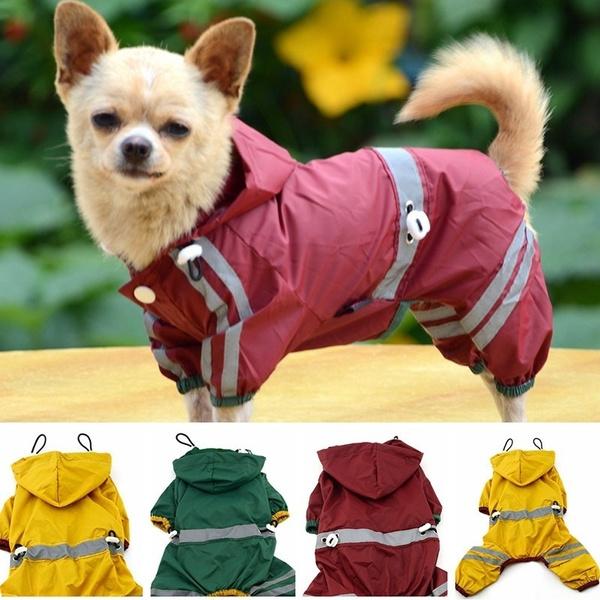 cute, Fashion, dog coat, clothesampshoe