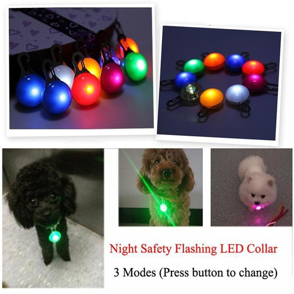 Outdoor, Night Light, Pets, dog&cat