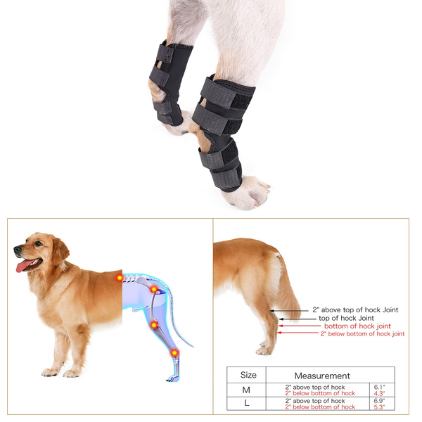 Knee Brace For Dogs Rehab Dog Knee Protector For Hind Leg Hock Joint Wrap  Knee Braces Support Pads for Dog Canine Brace Paw Compression Wrap with