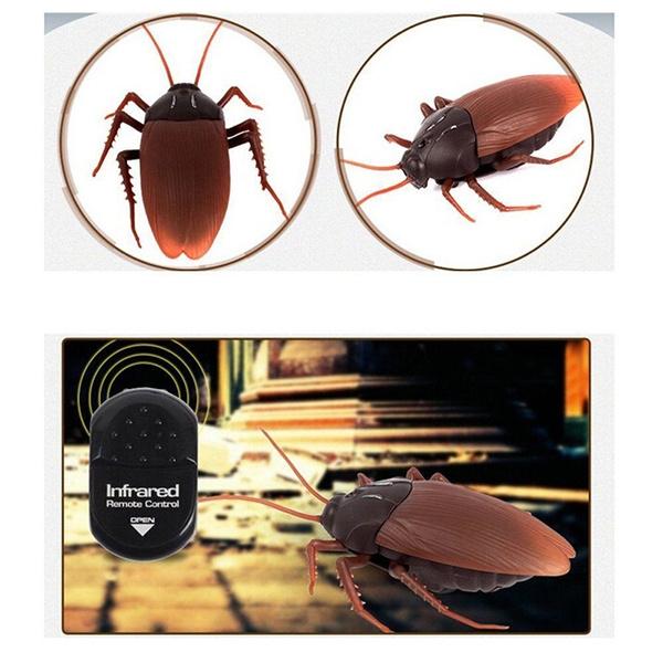 scary, remotecontrolcockroach, Fashion, Remote Controls
