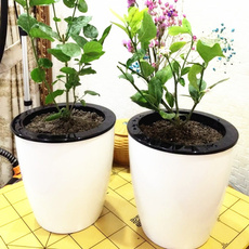 Flowers, Garden, outdoorflowerpot, automaticwatering