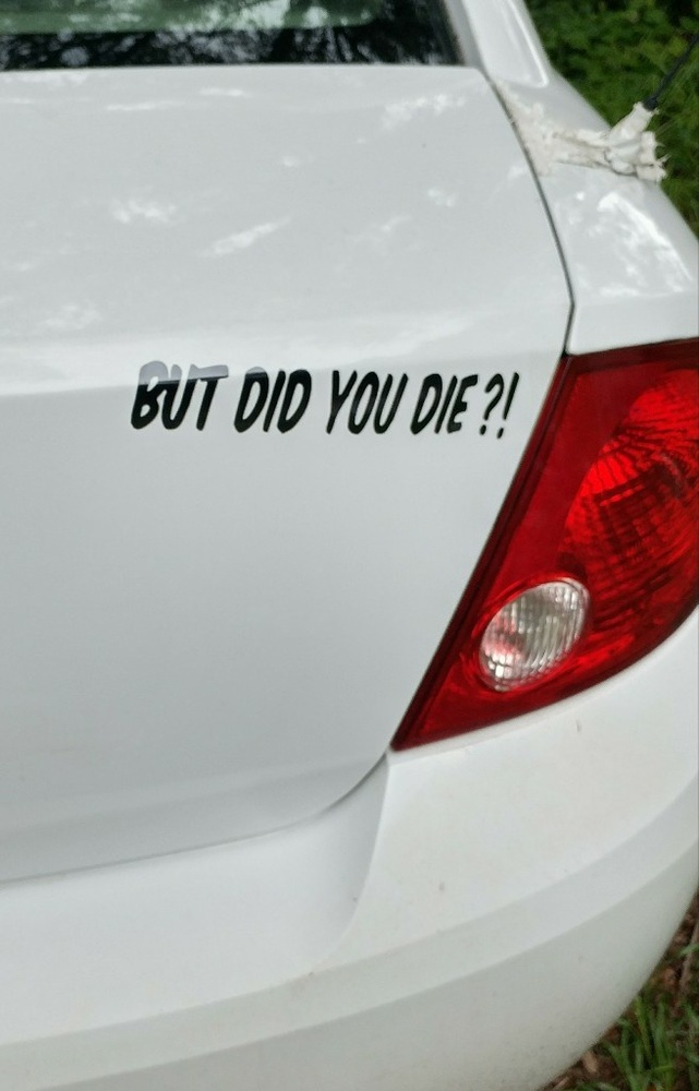 BUT DID YOU DIE? Funny Car Styling Window Stickers Vinyl Car Accessories