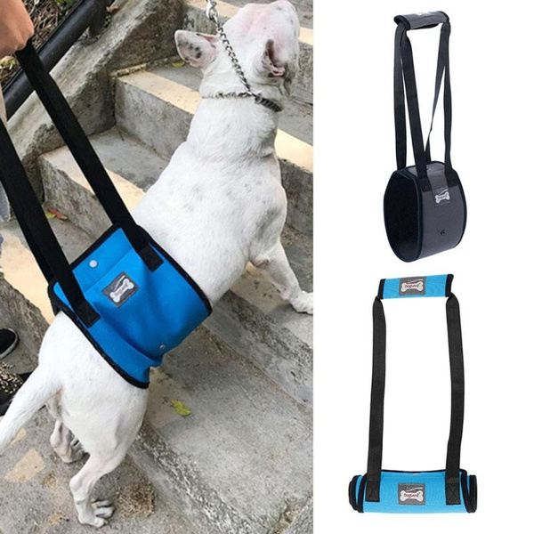 5a44a7e9eae9ef086c29153f 3 large wish topx 1pc portable elderly disabled pet dog harness support