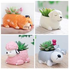 Bonsai, Mini, decorationpuppy, bonsaipot