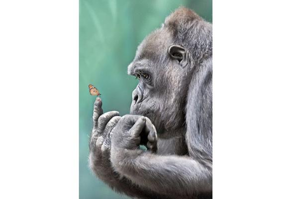 5D Diamond Painting Gorilla in the Leaves Kit