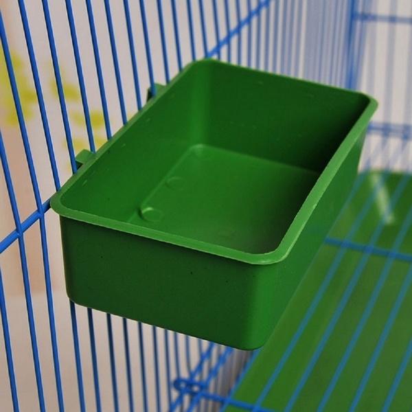 Box, water, birdhandlebox, Parrot