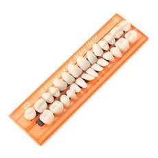 guideteeth, porcelaintooth, Pins, dental