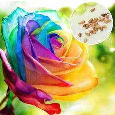 Bonsai, rainbow, Plants, Flowers
